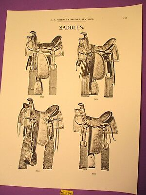 1880's PRINT of 4 Stock Style Saddles Mosemans Illustrated Catalog