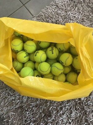Tennis Balls For The Dog