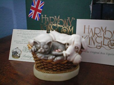 Harmony Kingdom Pecking Order Inf Dog, Cat, Mouse, Turtle Box Figurine UK Made