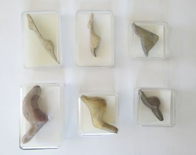 Set of 6 S Shape Paleolithic Venuses,  cast replicas