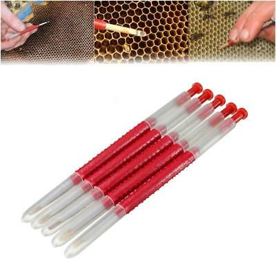 10Pcs Queen Bee Grafting Rearing Feeding Tool Beekeeping Equipment Supplies