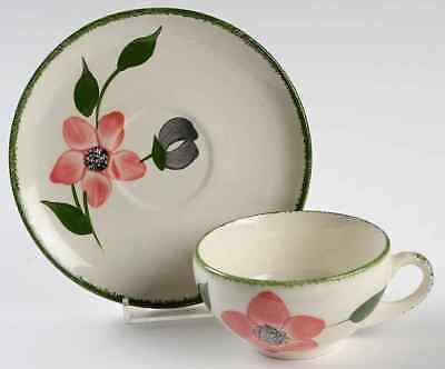 Blue Ridge Southern Pottery PINKIE Cup & Saucer 40553