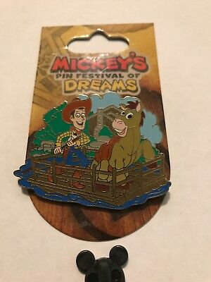 Disney Toy Story Woody Rafting Pin