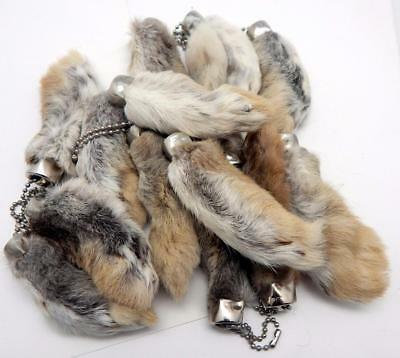 Natural Colored Lucky RABBIT'S FOOT (Oryctolagus Cuniculus) Keychain New