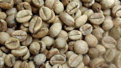 "UGANDA ""Queen of the Nile"" raw green Robusta coffee Beans for The Home Roaster."