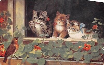 POSTCARD   ANIMALS   CATS   Catland         Tuck