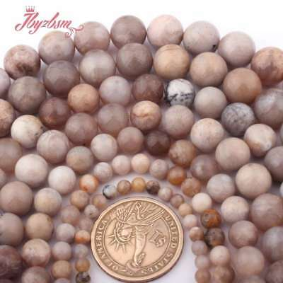"""Round Raw Fossils Ocean Agate Natural Stone Loose Beads for Jewelry Making 15"""""""