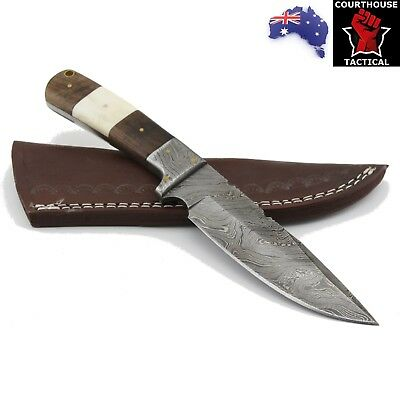 Handmade Hunting Knife, Damascus Blade, Walnut Wood & Camel Bone Handle, Sheath