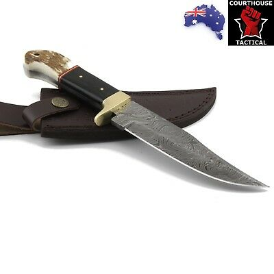 Handmade Hunting Knife, Damascus Blade, Stag Horn, Bone & Brass Handle, Sheath