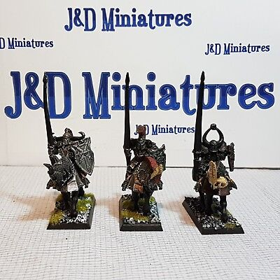 Games Workshop Warhammer Fantasy Battle Warriors of Chaos Knights Painted  Lot 1