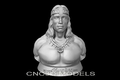 3D Model STL for CNC Router Carving Artcam Aspire Conan the Barbarian g705