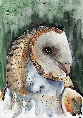 Barn Owl original watercolor bird painting wild nature forest eyes eagle art