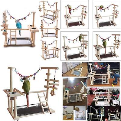 QBLEEV Parrot Playstand Bird Playground Wood Perch Gym Playpen Ladder with Toys