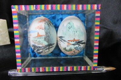 2 Antique / Vintage Chinese Hand Painted Eggs In Glass Case