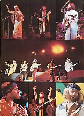 Vintage 1970s~THE BEACH BOYS~In Concert Icon Surfs Up Poster
