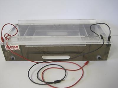 Brl Lab Horizontal Gel Electrophoresis System Buffer Cycling Capacity 1020 H1