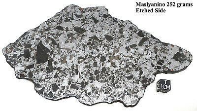 Maslyanino Slicated Iron Meteorite, FULL Slice - by catchafallingstar.com