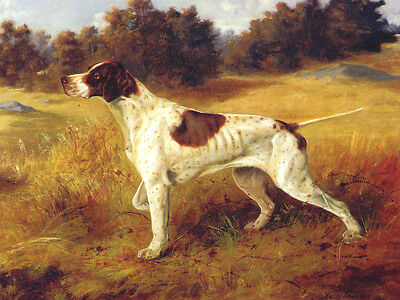 Pointer Dog by Louis Conold 1890  -  LARGE New Blank Note Cards