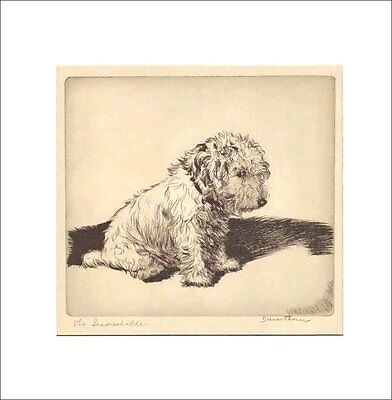 THE INCONSOLABLE DOG Print 1935 by Diana Thorne SEALYHAM TERRIER White Mat 12X12