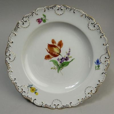 ANTIQUE MEISSEN PORCELAIN BOTANICAL CABINET PLATE 19th CENTURY