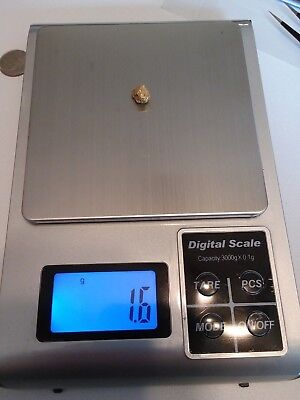 Gold Nugget 1.6 g from Crisson Gold Mine GA, USA