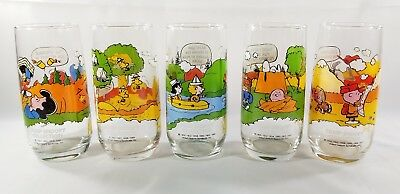 Mcdonalds Vintage Peanuts Camp Snoopy Collection Glass 5 Glasses 1965,1968,1971!