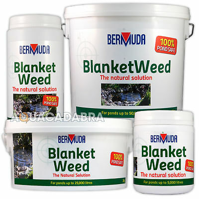 Bermuda Blanketweed Treatment Pond Algae Control String Remover Fish Koi