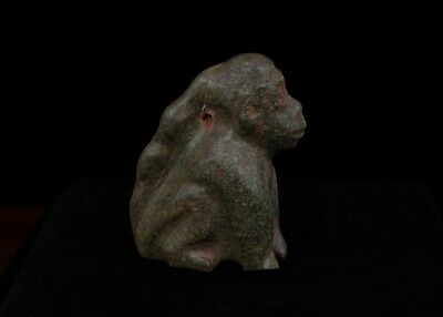 Pre-Columbian Zoomorphic Figurine-Private Collection- Olmec Aztec Maya