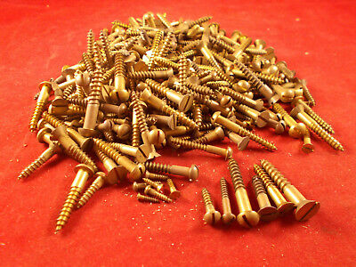 NOS Lot of 3+ LB. of Vintage Brass Slotted Flat and Round Head Wood Screws