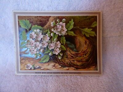 Victorian Birthday Card Embossed Birds Nest with Blue Robins Eggs White Flowers
