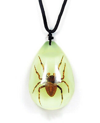 Glow In The Dark Lucite Teardrop Necklace w/ REAL Brown Recluse Spider YD0963