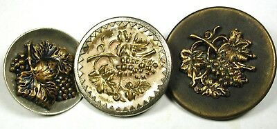 """3 Antique Brass Buttons Various Grape Images - 1"""" to 1 & 5/16"""""""