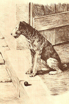 Airedale Terrier Dog  by Marguerite Kirmse OF PARIS ~ New  Large Note Cards