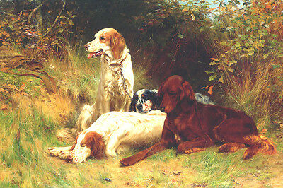 English & Irish Setter Dogs by Thomas Binks 1893 LARGE New Blank Note Cards