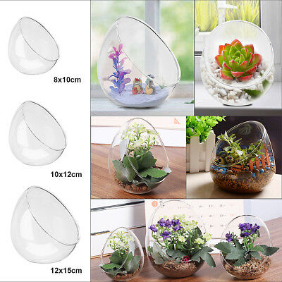 Crystal Glass Ball Vase Flower Plant Terrarium Container Home Office Decor