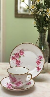 Antique Vintage Trio Cup Saucer Plate Csp High Tea Salisbury Sweetpea Pink