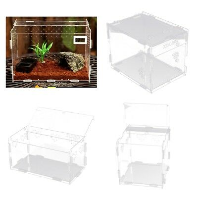 Transparent Acrylic Plastic Box Insect Reptile Transport Breeding Feeding Case
