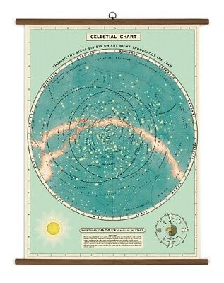 "Cavallini & Co. Vintage School Chart, Celestial, 28"" X 40"" Wall Hanging"