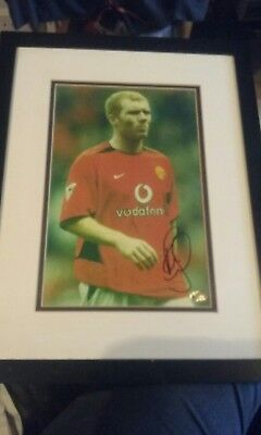 Manchester United Paul scholes signed & framed picture