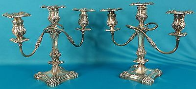 Pair of Antique Stunning Heavy 3 Arm Silver Plate Candelbra Candlesticks