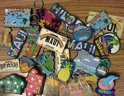 You Pick 3 HAWAII Magnets or Keychains : Gecko, Dolphin, Maui, Map, Bikini Butts