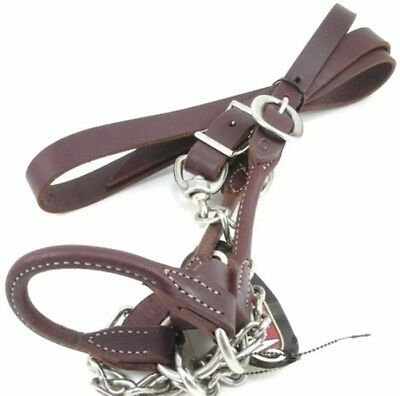 Weaver Rounded Leather Show Halter & Lead for Cattle, Medium (950-1500), Brown