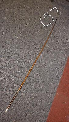 """Antique Holly Driving Whip- """"Davis & Co"""" 66"""""""