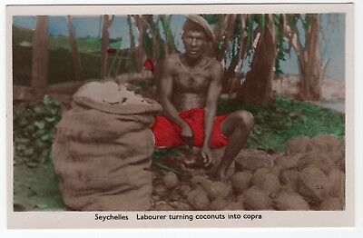 RARE Labourer Turning Coconuts Into Copra SEYCHELLES Real Photo Postcard RPPC PC
