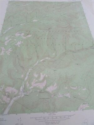 """22"""" X 27"""" New York State  Topographical Map of Peekamoose Mtn. 1969 M-4"""