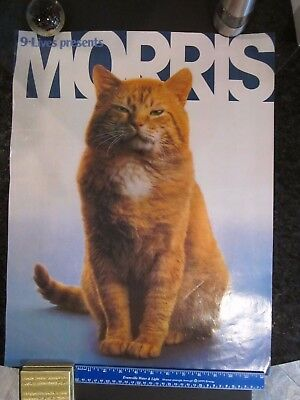 Rare Vintage Morris The Cat 9 Lives Cat Food Advertising Poster, 1980, Htf