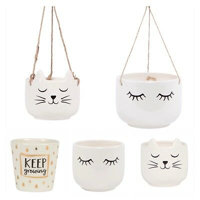 Sass & Belle Cat Whiskers/Eyes Shut/Keep Growing Hanging Plant Pot Planters Gift