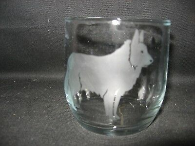 New Etched Belgian Tervuren Glass Tumbler