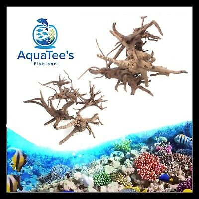 AquaTee's Driftwood Fish Tank Natural Wood Trunk Aquarium Decor Different Sizes