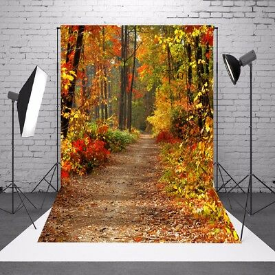 AU 5x7ft Autumn Fall Forest Vinyl Background Backdrop Photography Photo Props